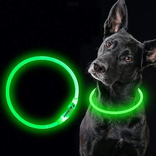 ELANOX LED Hundehalsband wiederaufladbar USB universelle Größe Leuchthalsband (grün)