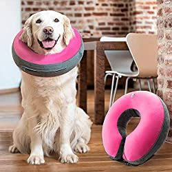 Top 5 Best Dog Cones 2021