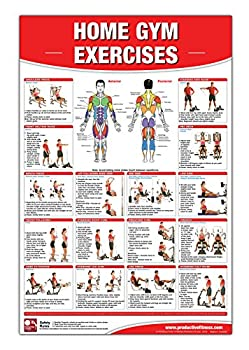 Home Gym Exercises Laminated Poster/Chart  Home Gym Chart Home Gym Weight Lifting Routine Weight Stack Gym Chart BodySolid Gym Poster .. Selectorized Gym Poster Exercises poster