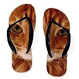 Meowie Sandalia personalizada para cara de gato con chancletas   Diseño delgado personalizado de la cara de tus gatos   Regalos personalizados para hombres y mujeres Añade tu foto