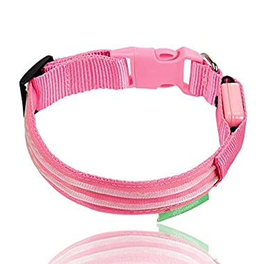 "Illumiseen LED Dog Collar - USB Rechargeable - Available in 6 Colors & 6 Sizes - Makes Your Dog Visible, Safe & Seen - Pink, Large (19 – 24""/49 – 61cm)"
