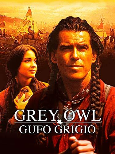 Grey Owl - Gufo Grigio