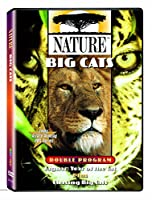 Nature: Big Cats [DVD] [Import]
