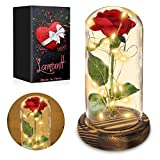 Lamantt Beauty and The Beast Rose Set,Red Silk Rose and Led Light with Fallen Petals in Glass Dome on Wooden Base Valentine's Day Anniversary Birthday Home Office Decorations