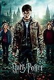 Harry Potter Maxiposter, Holz, Part 2, 61 x 91,5 cm