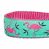 Blueberry Pet Hundehalsband Pink Flamingo auf Hell-Smaragtgrün 1,5 cm S Basic Polyester Nylon Hundehalsband - 5