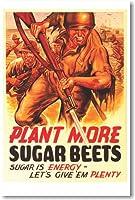 植物More Sugarビーツ–新しいヴィンテージ再印刷ポスター