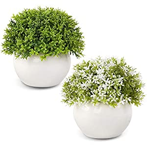 Silk Flower Arrangements Wholine 2 Packs Artificial Mini Potted PlantsSmall Fake Green Grass Shrubs with White Pot for HomeOffice Desk Room Decoration