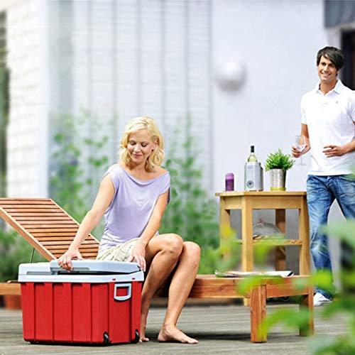 WLAY 40 liter draagbare thermo-elektrische koelbox voor outdoor-activiteiten in de tuin barbecue picknick camping geluidloos 12 V