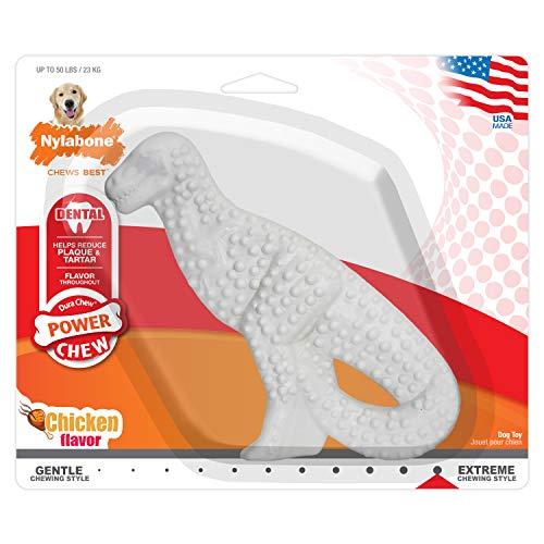 Nylabone Original Chicken Flavored Dental Dinosaur Dura Chew Toy