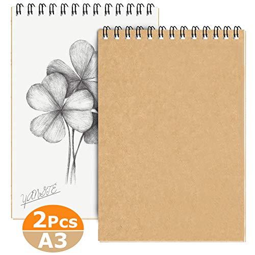 Blocco per Schizzi A3, Quaderno da Disegno Spiralato per Artisti, 160g/m² 60 Pagine/30 Fogli Sketchbook Cartoncino Senza Acidi - Pagine Paesaggio