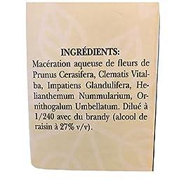 Elixir d' Urgence Bach compte gouttes 10 ml N°39 – Concentration supérieure 1/240