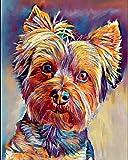 Dipingi per numero per adulti Bambini Seniors Cane principiante animale colorato -Yorkshire Terrier Dipinto con pennelli e colori acrilici Decorazione per mobili arte murale 40X50CM-Senza cornice