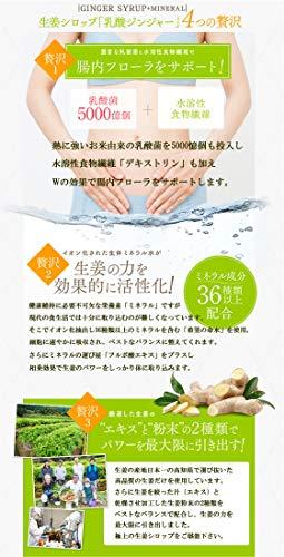 乳酸菌入り生姜シロップ乳酸ジンジャー