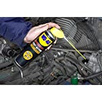 WD-40 Specialist, Fast Acting Degreaser with Smart Straw, Removes Oil, Grime & Grease, 500ml 44393 6