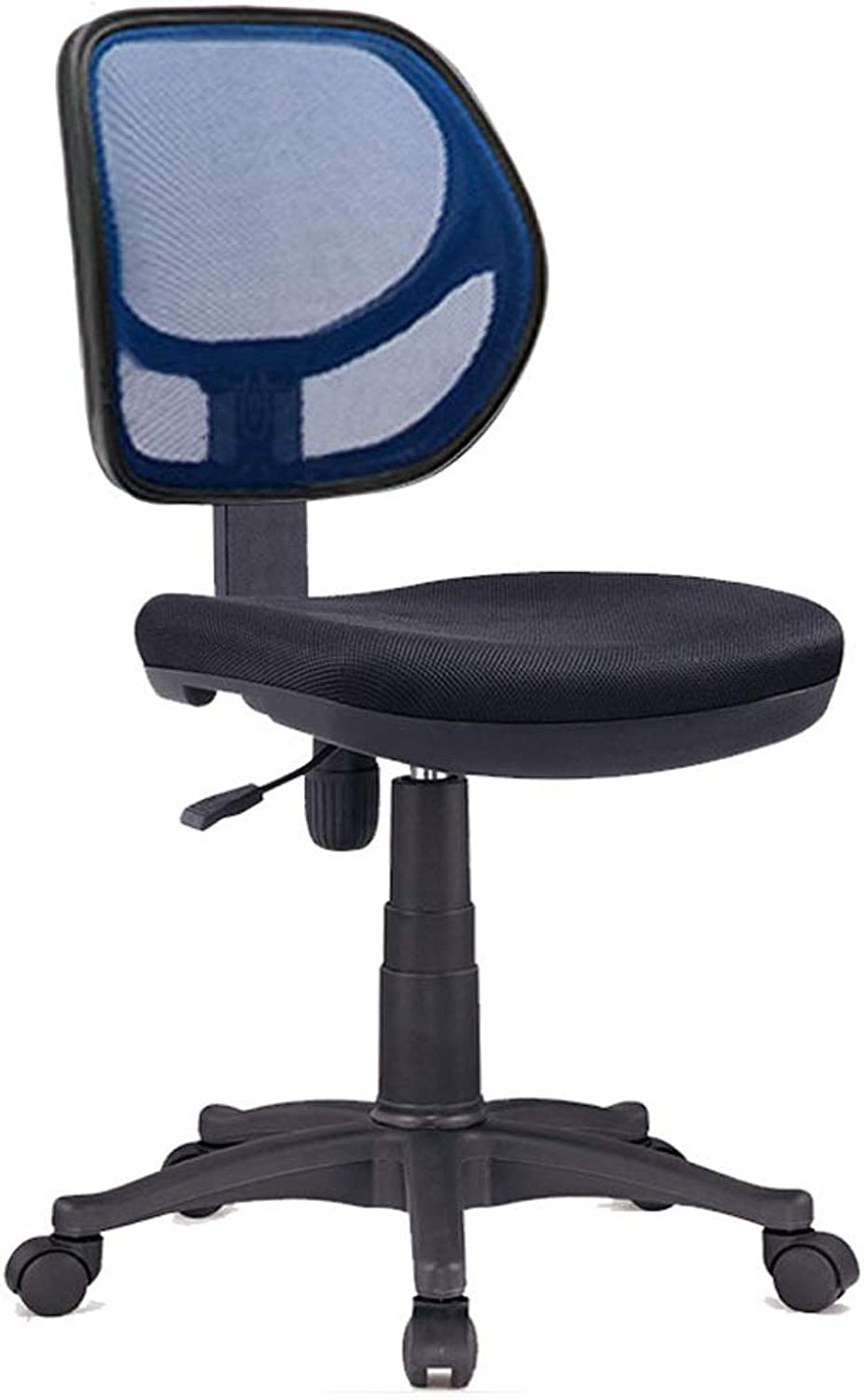 Mesh High Back Executive Adjustable Swivel Office Chair Lumbar Support Computer Desk Chair Training Chair-Black (color   bluee)