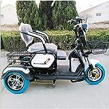 XYDDC Adulto Triciclo eléctrico al Aire Libre Ancianos Viaje discapacitados móvil Vespa 48V20A batería de Litio de Carga...