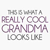 EMC Graphics This is What A Really Cool Grandma Looks Like Vinyl Waterproof Sticker Decal Car Laptop Wall Window Bumper Sticker 5'
