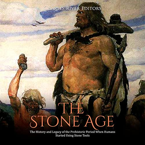 The Stone Age cover art