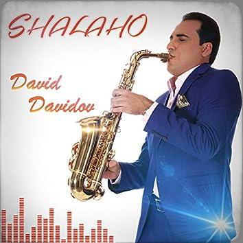 Shalaho