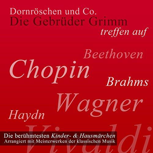Dornröschen und Co. audiobook cover art