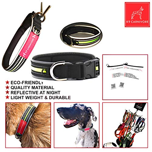 K9 CARNIVORE Custom Designed Medium Size Glow in The Dark Reflective Comfortable Neoprene Padded Dog Collar