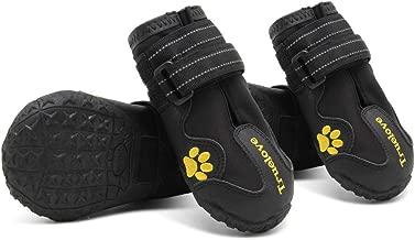 Amazon.es: truelove perro