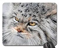 不機嫌そうなマヌルネコのマウスパッド、マウスパッド(猫マウスパッド)