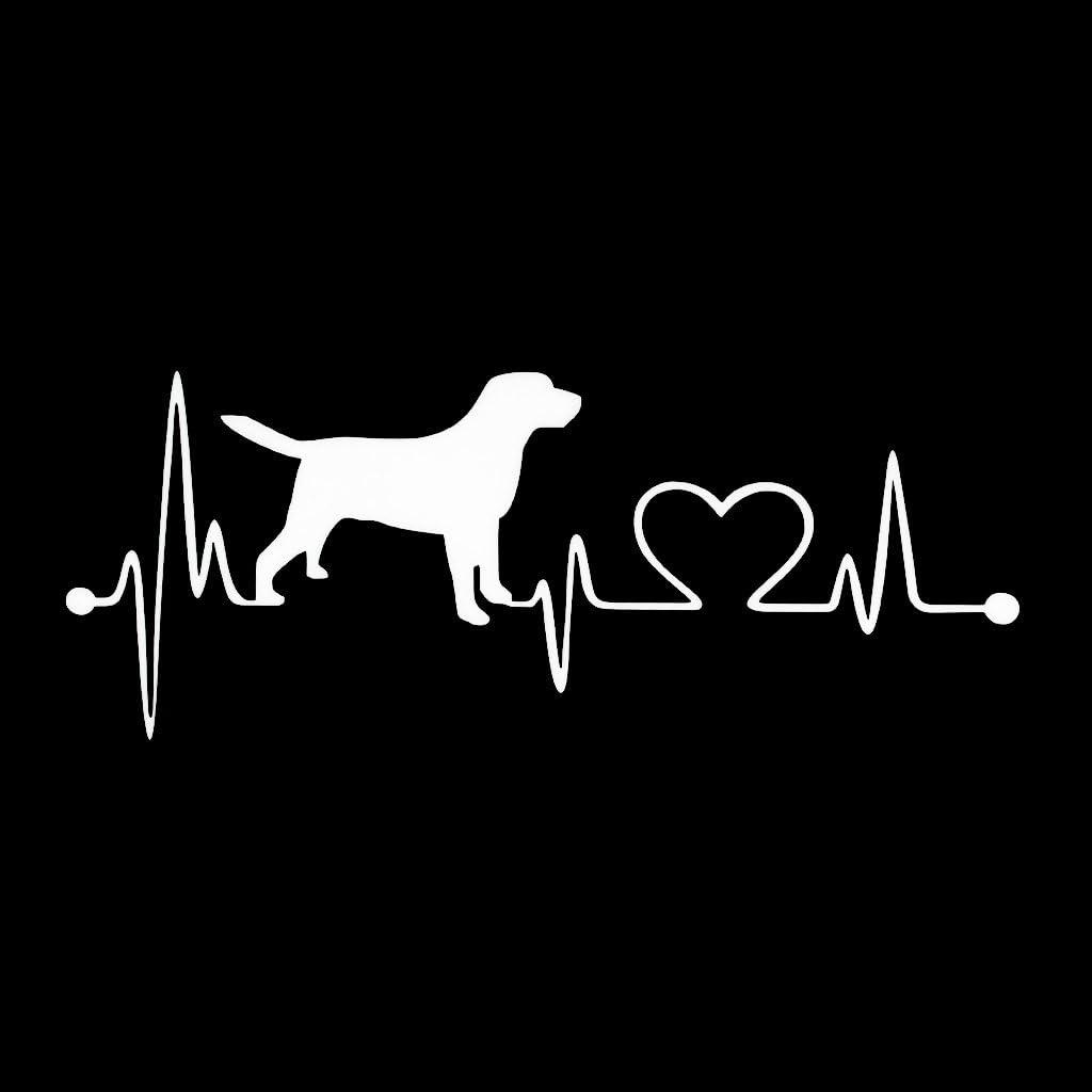 Gwxevce Labrador Retriever Herzschlag Liebe Aufkleber Auto Aufkleber Creative Auto Zubehör Küche Haushalt