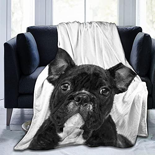 Dog Throw Blankets,Adorable Dog Black French Bulldog Face Soft and Comfortable Warm Fleece Blanket for Sofa, Bed, Office Knee pad,Bed car Camp Couch Cozy Plush 50'x40'