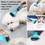 Zoom IMG-1 docatgo spazzola per cani sciogli