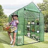 BBBuy 2-Tier Mini Greenhouse 8 Shelves Garden Plant Flower House Grow Tent Indoor Outdoor Green House