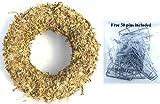 "13"" Sphagnum Moss Living Wreath Round, Natural-Organic Original"