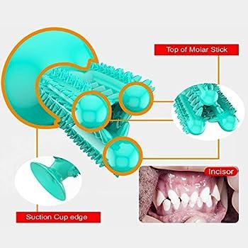 CEESC Chien Brosse À Dents À Mâcher Jouets Chien Dents De Nettoyage Bâton, Chiot Brossage Soins Dentaires Oraux pour Petits Moyens Grands Chiens (Bleu)