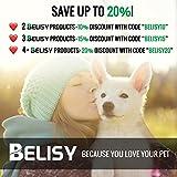 BELISY Hunde-Sicherheits-Gurt fürs Auto – höchste Sicherheit für Dich und Deinen Hund – mit besonders elastischer Ruckdämpfung für maximalen Komfort – passend für alle Hunderassen – höchste Markenqualität - 8