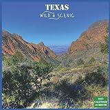 Texas Wild & Scenic Calendar 2022: Official Texas Calendar 2022, 16 Month Calendar 2022
