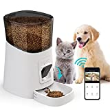 Cat Feeder With Camera