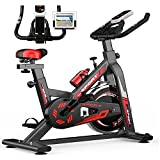 WOERD Stationary Exercise Bicycle Cheap Oldfashioned Looks Like A Real Bike, Indoor Cycling Bike Magnetic Resistance 6KG Flywheel LCD Digital Monitor Adjustable Seat & Handlebar