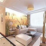 JIAOYK Fototapete Weizenfeld Landschaft 3D Murals Effekt Wandbild Vlies Tapete Moderne Wanddeko Schlafzimmer Wohnzimmer 300cm(W) x210cm(H)-6 Stripes