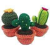 DARN GOOD YARN ONE of A Kind | DIY Amigurumi Knit and Crochet Cactus Kit | 3 DIY Crochet Kit Includes Crochet Yarn, Hook, and Needles | 3 Piece Set
