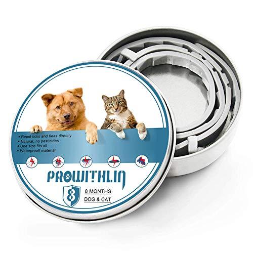 Collar Antiparasitos para Perros y Gatos, contra Pulgas Garrapatas y Mosquitos, Ajustable a Prueba de Agua, una solución Natural para la prevención de plagas, 8 Meses Talla única