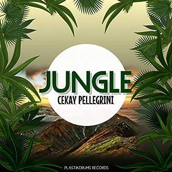 Jungle (Cekay 2020 Edit)