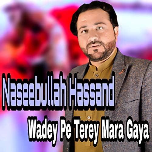 Naseebullah Hassand