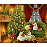 DIY Oil Paint by Numbers for Adults and Kids Santa Claus Paint by Numbers DIY Painting Acrylic Paint by Numbers Painting Kit Home Wall Decoration 16x20inch