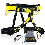 KwikSafety (Charlotte, NC Mandrill (Combo Pack) Comfort Climbing Harness, Heavy Duty Locking Carabiner, Tool Lanyard & Clip, Lightweight Padded Adjustable Half Body Waist Belt 310lb Limit Mountain