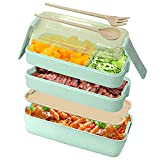 Bento Box Japanese Lunch Box,3-In-1 Compartment, 900ML Leakproof Eco-Friendly Bento Lunch Box Meal Prep Containers for Kids & Adults (Green)