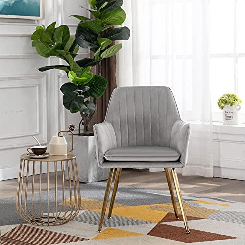Irene House Schlafzimmerstuhl aus Samt mit Metallbeinen Wohnzimmerstuhl Esszimmerstuhl Stuhl für Schminktisch (grau, 1)