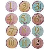 Tanmo 12 Pz/Set Mese Adesivo Baby Photography Milestone Memorial Mensile Neonato Bambini Numero di Carta Commemorativa Puntelli Foto Accessori
