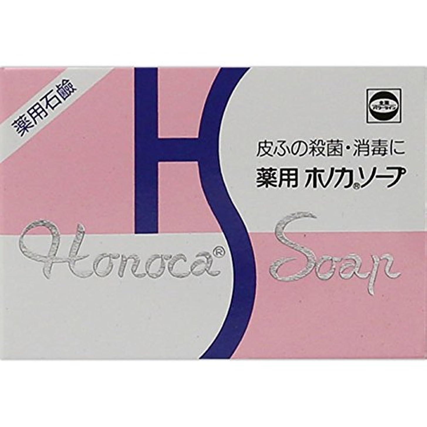 隠淡い針薬用ホノカソープ 80g