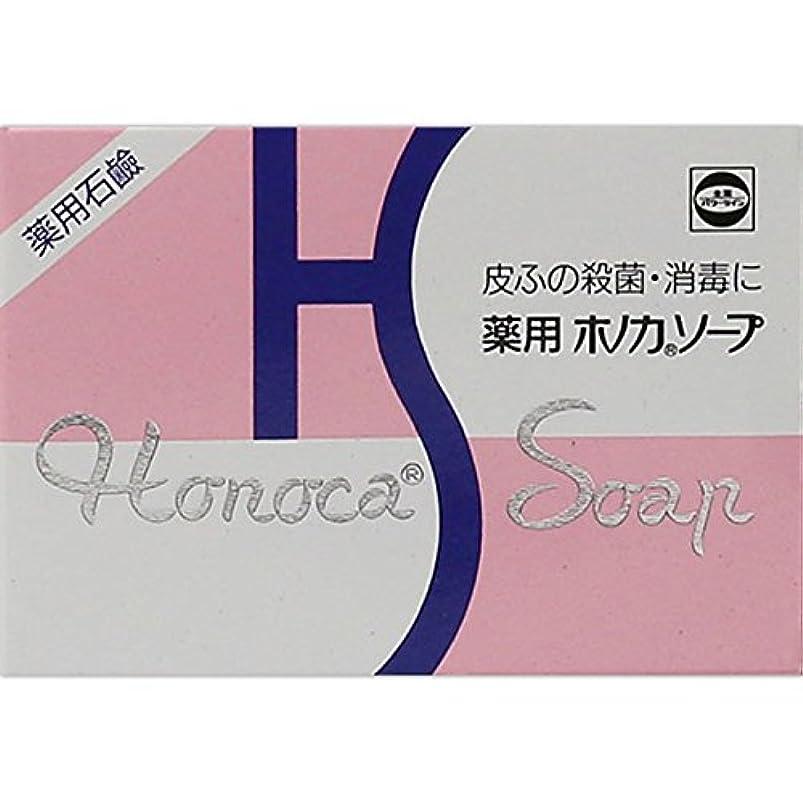 みすぼらしいエチケットパラメータ薬用ホノカソープ 80g